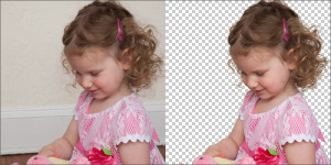 Sample Photo Of Photoshop Image Masking Service